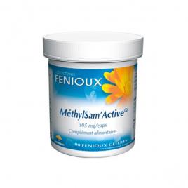 laboratoires Fenioux MéthylSam'Active 90 Gélules