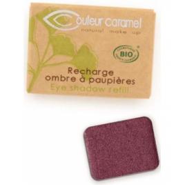 Couleur Caramel Recharge Ombre à paupières n°100 Fatale nacré 1.3g