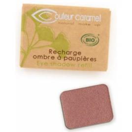 Couleur Caramel Recharge Ombre à paupières n°066 Vieux Rose nacré 1.3g
