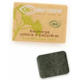 Couleur Caramel Recharge Ombre à paupières n°118 Gris Vert étoilé nacré 1.3g