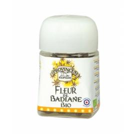 Provence D Antan Badiane fleur bio pot végétal biodégradable 15g Provence D Antan Accueil Onaturel.fr