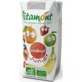 Vitamont Tétra Pack Cocktail Junior Bio 25 cl Vitamont Accueil Onaturel.fr