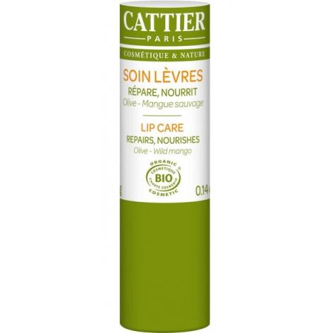 Cattier Baume à lèvres réparateur et ultra nourrissant Olive Mangue 4g Cattier