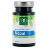 Nopal - 90 gélules Boutique Nature Onaturel