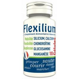 LT Labo Flexilium Glucosamine Chondroitine Silicium 100 gélules Lt Labo