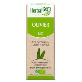 Herbalgem Olivier bio Flacon compte gouttes 50ml Herbalgem Gemmobase