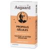 Aagaard Propolis zinc Propolin 30 gélules Onaturel