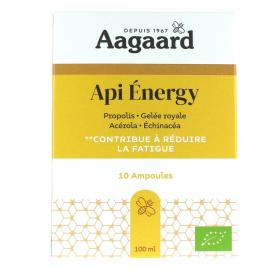 Aagaard Api' Energy Aagaard