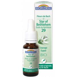 Biofloral Elixir Star of Bethléem n° 29 Etoile de Bethléem 20ml Onaturel