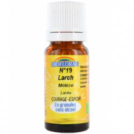 Biofloral Elixir Larch n°19 Mélèze en granules 10g Biofloral Elixirs floraux - Dr Bach Onaturel.fr
