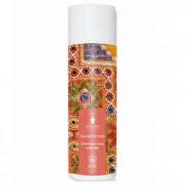 Bioturm Shampooing cheveux roux ou colorés 200ml Bioturm