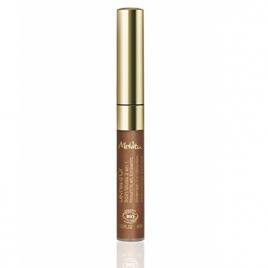 Melvita Gloss Lèvres d'Or 4ml Melvita Anti-âge / Beauté Onaturel.fr
