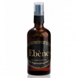 Hégor Ebene Sérum végétal actif soin capillaire regénérant 100 ml Hégor Shampooings Cheveux secs Onaturel.fr
