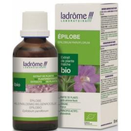Ladrome Extrait de Plantes Fraîches Epilobe bio 50ml Ladrome Confort Urinaire Onaturel.fr