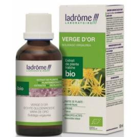 Ladrome Extrait de plantes fraîches Verge d'or bio 50ml Ladrome Muscles et Articulations Onaturel.fr