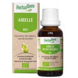 Herbalgem Gemmobase Airelle bio Flacon compte gouttes 50ml Herbalgem Gemmobase Accueil Onaturel.fr