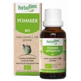 Herbalgem Gemmobase Pommier bio Flacon compte gouttes 50ml Herbalgem Gemmobase Accueil Onaturel.fr
