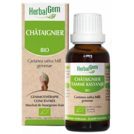 Herbalgem Gemmobase Châtaignier bio Flacon compte gouttes 50ml Herbalgem Gemmobase Accueil Onaturel.fr