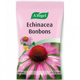 A. Vogel Bonbons Echinacea Cerise, Acérola et Groseille 75g A. Vogel Immunité Onaturel.fr