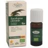 NatureSun'arôms Huile essentielle eucalyptus citronné bio 10ml