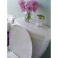WC-Désodorisants Bio